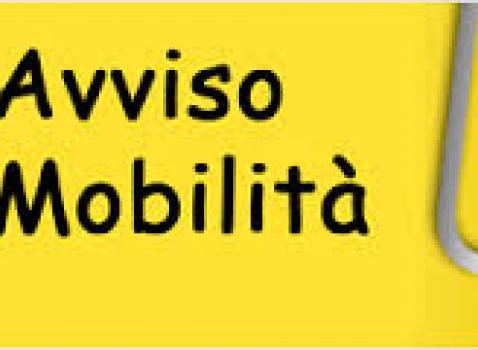 AVVISO DI MOBILITA' ISTR. AMM.VO-CONTABILE D1